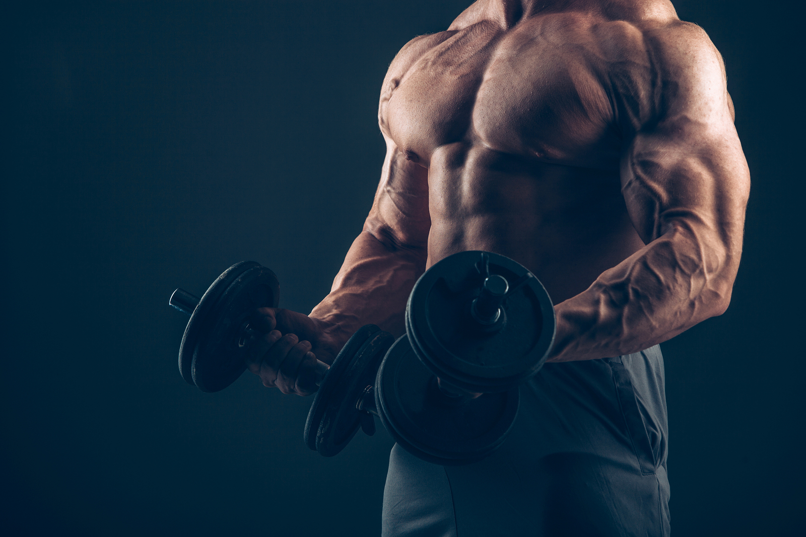 Sculpting A Masterpiece Biceps Muscle Prodigy