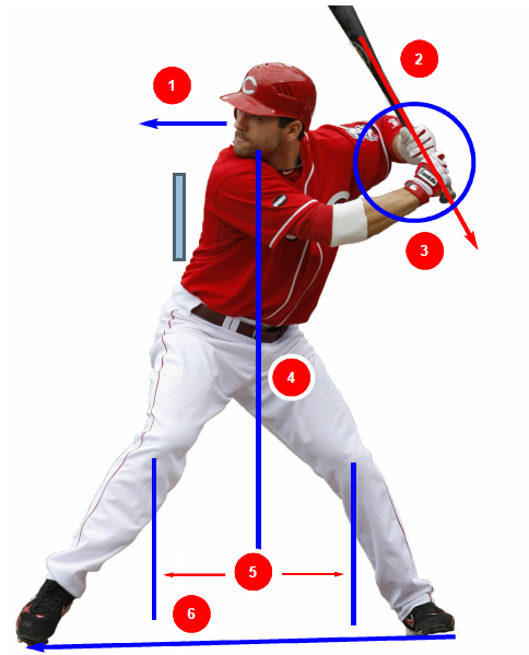 Votto's workouts have helped him develop some of the best hitting mechanics in all of baseball.