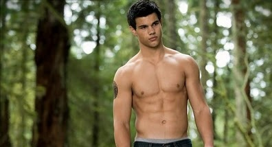 Does taylor lautner support gay marriage
