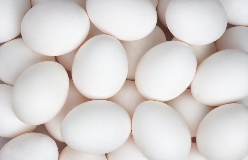 The Benefits of Egg Protein | Muscle Prodigy